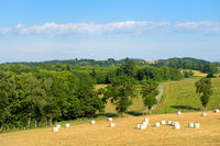 Landscape French Limousin