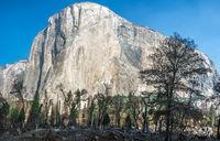 morning view of Yosemite Valley, California