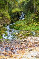 Schöner Bachlauf im Zauberwald, Zubringerfluss zum Hintersee, Nationalpark Berchtsgaden
