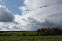 Gründüngung, green manure - Herbsthimmel, sky in autumn
