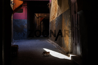 Narrow and dark streets of Fez city, Morocco.