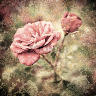 Grunge texture with floral background