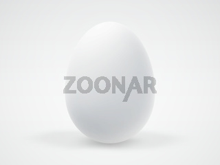Single white realistic 3D egg isolated on white background.