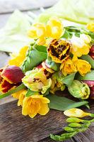 Frische bunte Fruehlingsblumen
