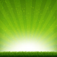 Green Burst Banner With Rays And Grass