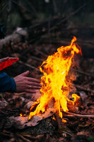 Man warms his hands on fire. Burning wood at evening in forest. Campfire at touristic camp at nature. Barbeque and cooking outdoor fresh air. Concept of safety and responsibility to nature