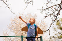 Portrait of cute boy on climbing frame holding hand up