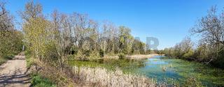 Alter Elbarm im Naturschutzgebiet Kreuzhorst