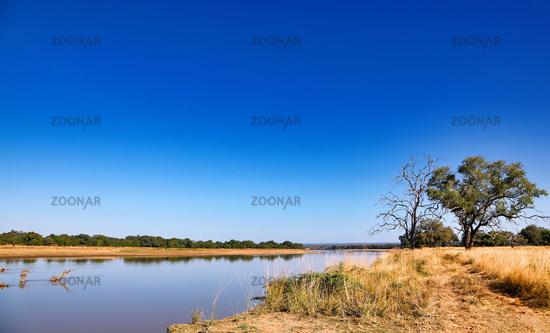 Landschaft am Luangwa, South Luangwa Nationalpark, Sambia   landscape at the Luangwa River, Zambia