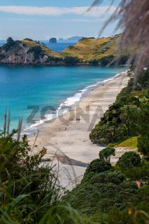 View of Hahei beach in New Zealand