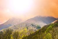 Morning mist in Alps