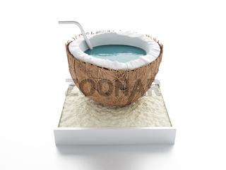 coconut paradise. summer concept