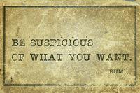 be suspicious Rumi