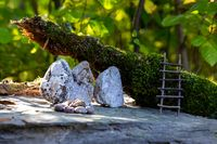Whimsical miniature fairy world in woods
