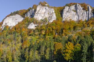 Hausener Zinnen im herbstlichen Donautal, Hausen im Tal, Oberes Donautal, Baden-Württemberg, Deutschland