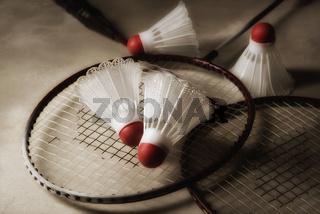 Badminton Still Life