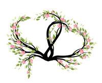 Flower decoration of sakura