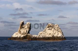 Felsen von Tauchplatz Roca Partida, Mexiko
