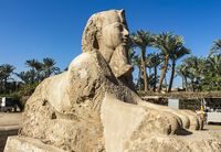Sphinx of Memphis in the Village of Mit Rahina or Memphis Museum. Egypt