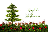 Christmas Tree, Silver And Red Stars, Fir Branch, Willkommen Means Welcome