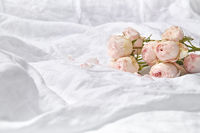 Roses flowers on crumpled sheets.