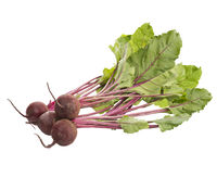 Beet, beetroot bunch on white background