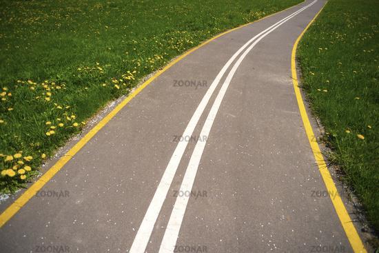 dandelion field road