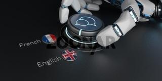 AI Translator English French
