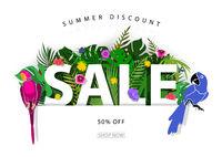 Sommer Sale Hintergrund mit tropischen Pflanzen und Papageien