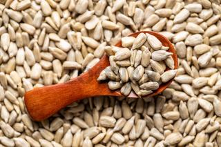 Peeled sunflower seeds.