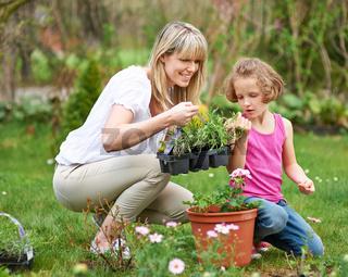 Familie im Frühling macht Gartenarbeit