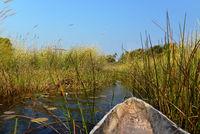 Flußstraße im Okawango Delta, Bostwana,