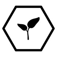 Pflanze und Sechseck - Plant and hexagon