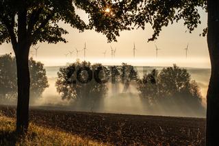 111002-windpark-01.jpg
