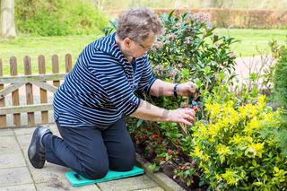 Caucasian senior woman pruning branch in garden
