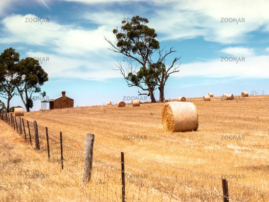 Australia landscape scenery background