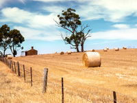 Australia landscape scenery background