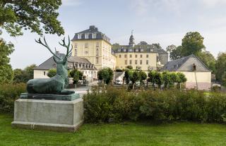 Hirsch, Schloss Wittgenstein, Bad Laasphe, NRW, Ge