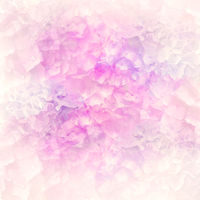 Abstract colorful hydrangea flowers for background,soft focus.