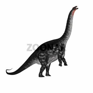 Apatosaurus dinosaur standing up - 3D render