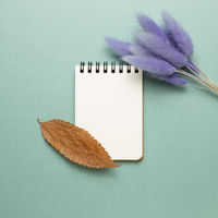 Empty notebook with tail grass, dry leaf on green background. top view, copy space