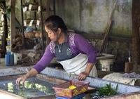 Traditionelle Herstellung von Maulbeer Papier mit Blütendekorationen, Ban Xangkong, Laos