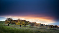 Sunset on a hill in Burgenland Austria