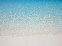 Sea shore at summer sunny day