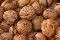 Walnüsse, Juglans regia, walnut