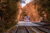 Moscow, Russia. October 2, 2020: Tram rails in the corridor of the yellow autumn trees. Fall forest among which goes a tram. Railway through the park