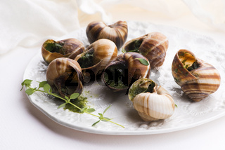 Escargot platter, delicious french delicatessen