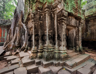 Ta Prohm temple at Angkor Wat, Siem Reap, Cambodia