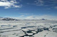 Nature of Antarctic