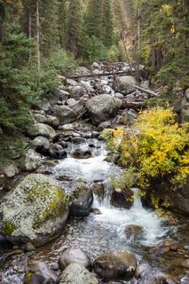 Rapids in Yellowstone